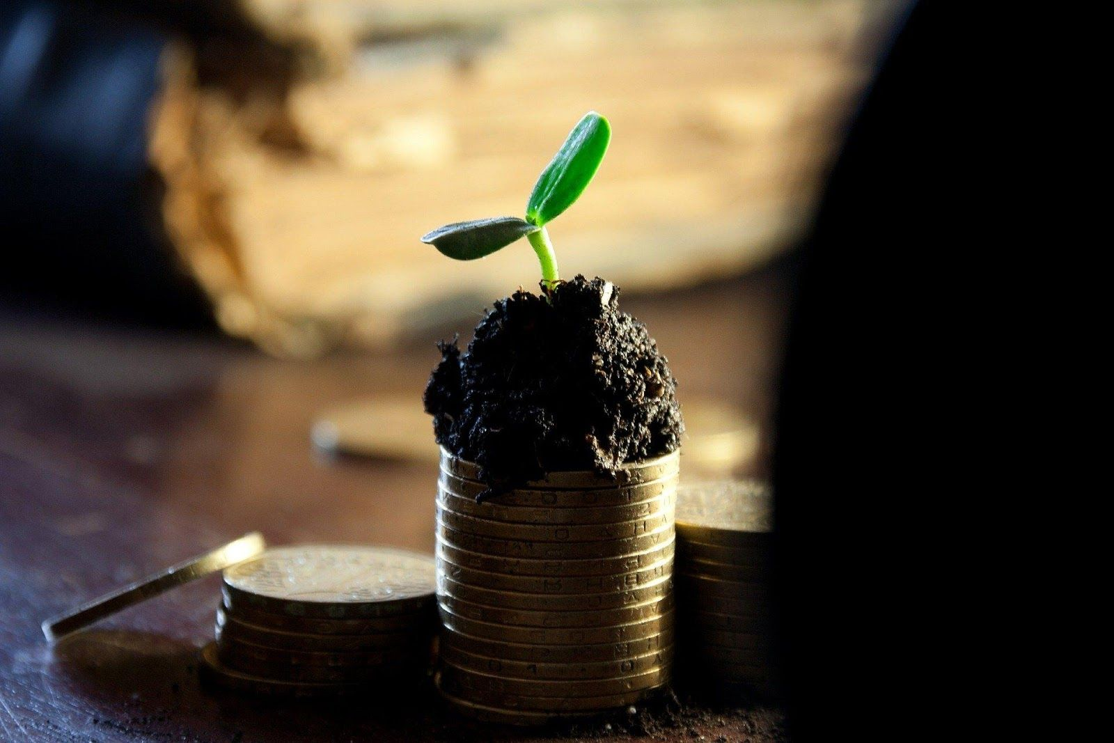 What is Passive Income Investment?
